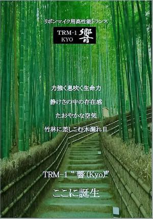 Kyo_2